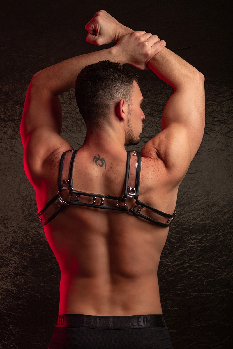 HARNESS SYNTH PARTY DUDE